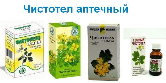 Аптечный чистотел