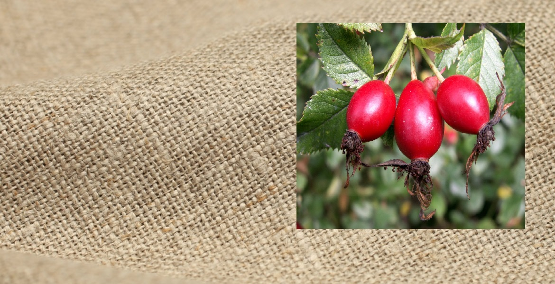 На основе ягод шиповника и льняной ткани